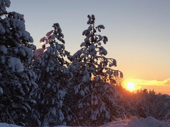 Winter2016_01
