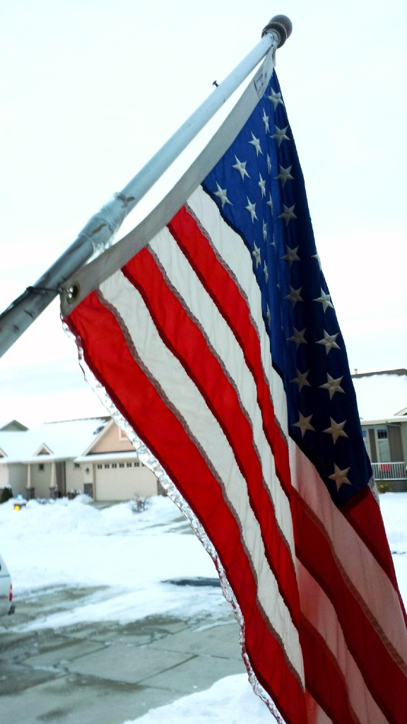 frozen-flag
